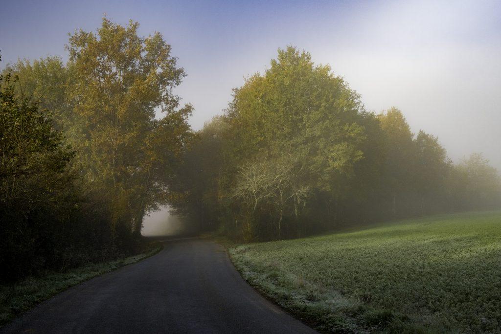 la nebbia del primo mattino avvolge la campagna