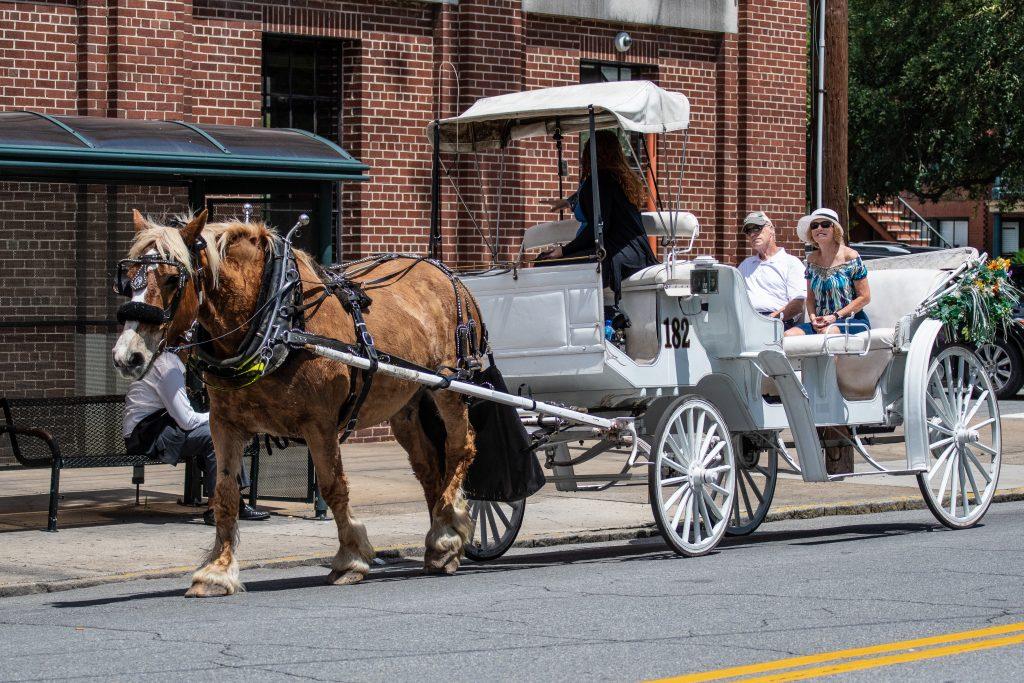 anche a Savannah numerosi tours si fanno in carrozzella, noi li abbiamo evitati