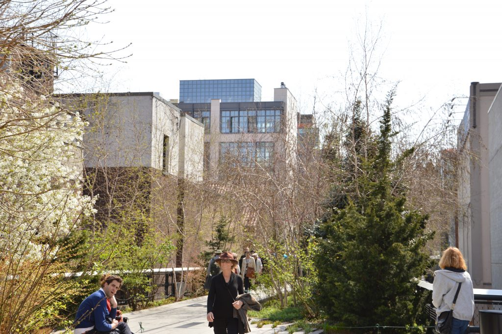 diverse specie di piante crescono lungo la passeggiata sopraelevata della High Line