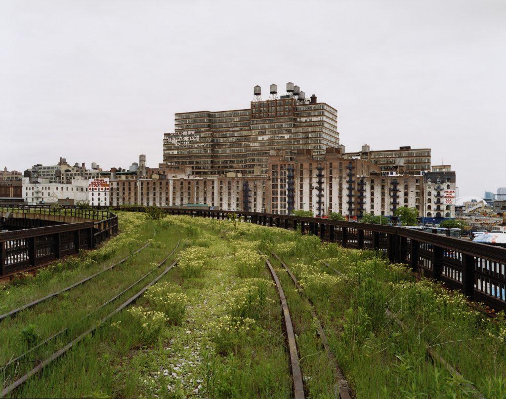 il tracciato della High Line di New York invaso dalle erbacce negli anni dell'abbandono