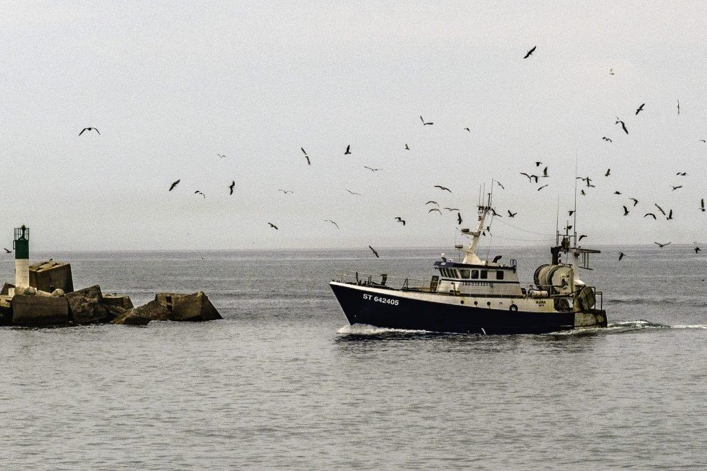 rientro dei pescherecci nel porto di Sète