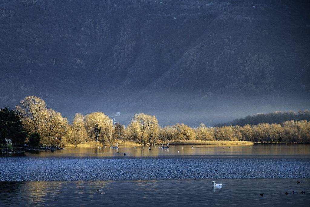 paesaggio invernale del lago di Como