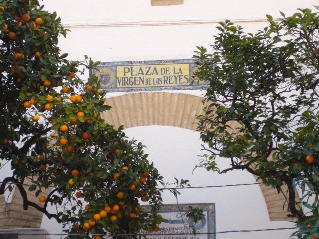 piazzette nascoste e profumo di aranci